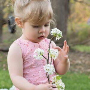 penny flowers