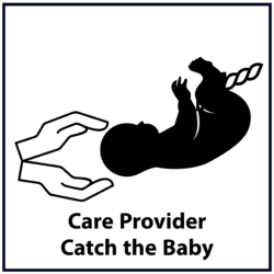 Care Provider Catch the Baby