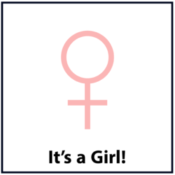 It's a Girl: Pink
