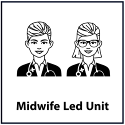 Midwife Led Unit